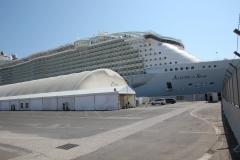 Allure of the Seas (4)