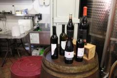 Vinsmaking i Tuscany (16)