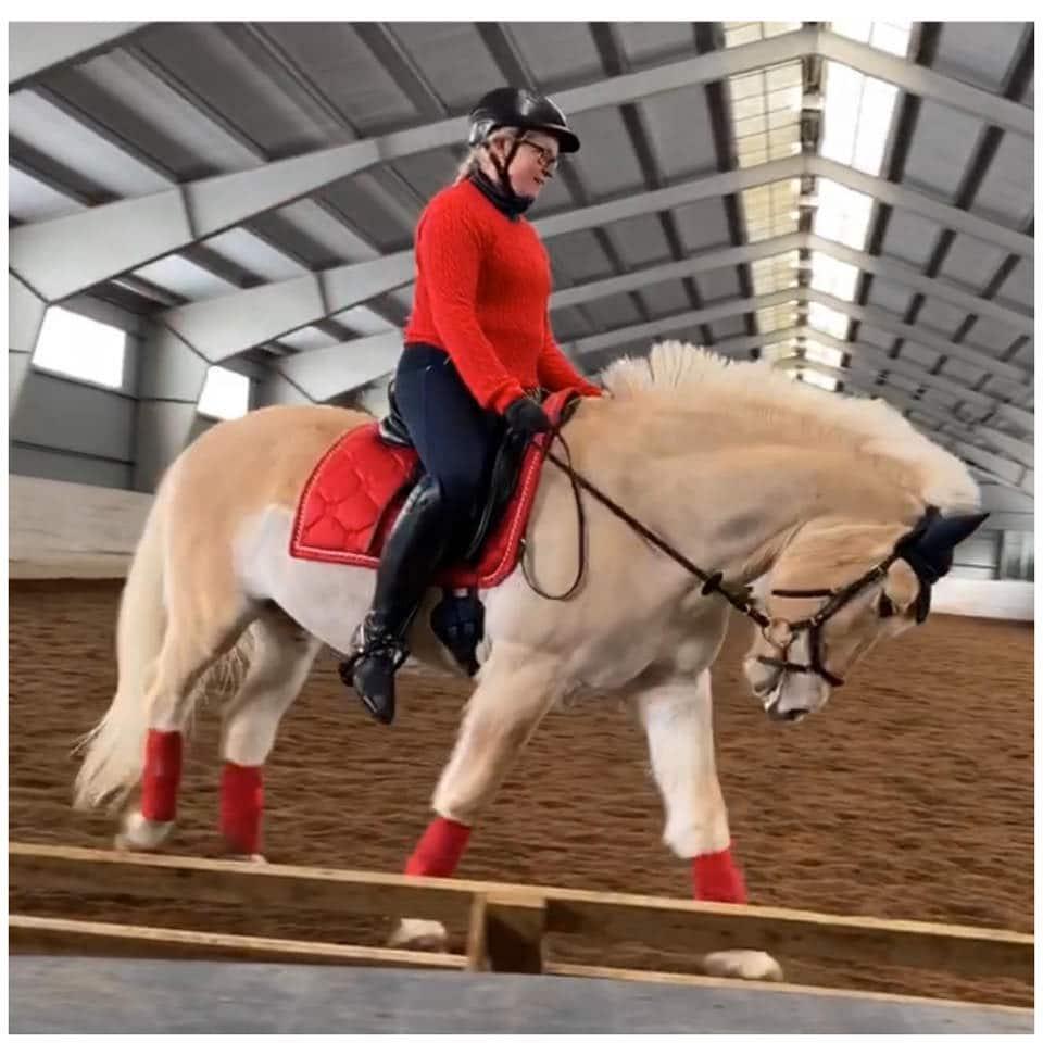 Hest og rytter PS of Sweden rød