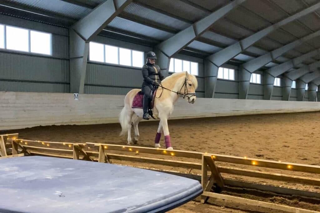 Treningsglede med hest