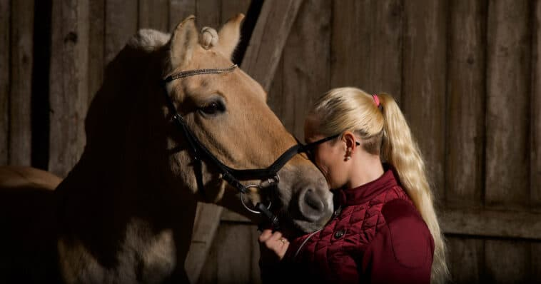 Fotoshoot med hest på stallen