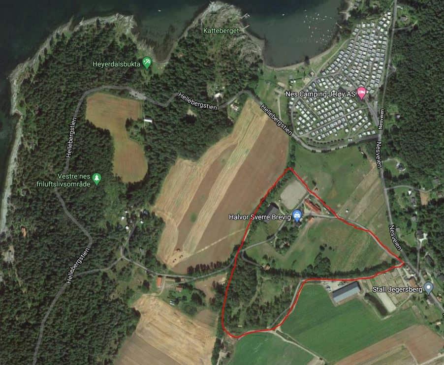 Min første ridetur alene sammen med fjordingen Kvikk