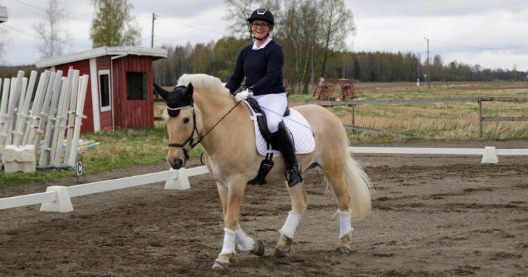 Stigende selvtillit på hesteryggen